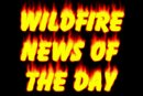 Wildfire Newsletter