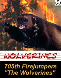 705th Firejumper Company - The Wolverines
